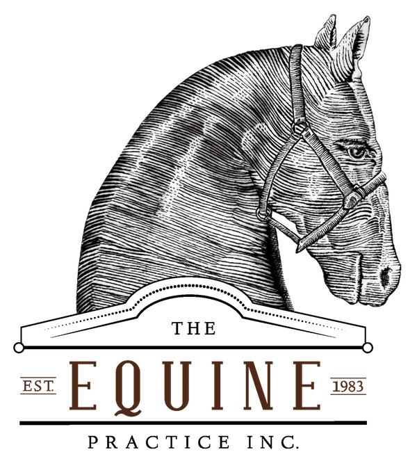 The Equine Practice, Inc